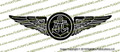 "Navy Air Crew Wings 21"" Window size Vinyl Die-Cut Sticker / Decal VSFNACW21"
