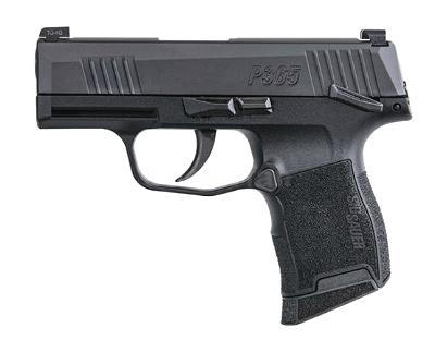 Sig p365 with safety holster choices