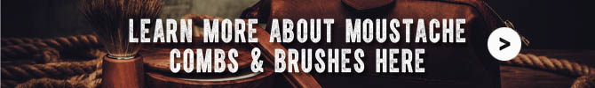 moustache-combs-brushes-everything-you-need-to-know-about-it.jpg