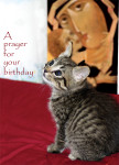 Prayer for Your Birthday