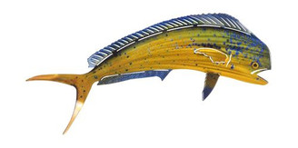 Mahi Mahi Metal Wall Art