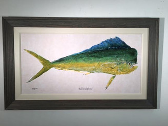 "Bull Dolphin X Large Framed Artwork 50"" x 30"""