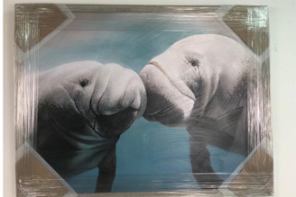 Manatees Kissing Large Artwork on Canvas 42 x 32""