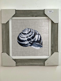 Framed Shell Painting