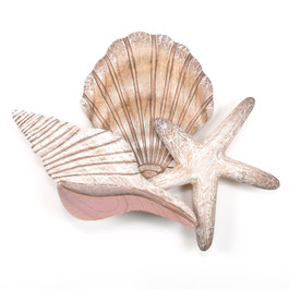 LARGE WOODEN SHELL WALL SCULPTURE CW054