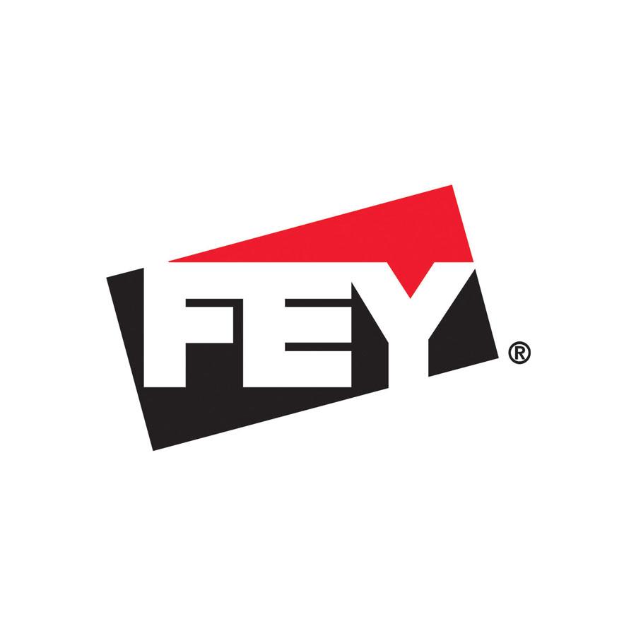 fey-tm-color-logo.jpg