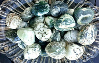Tree Agate From India