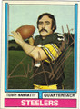 TERRY HANRATTY PITTSBURGH STEELERS AUTOGRAPHED VINTAGE FOOTBALL CARD #13014P