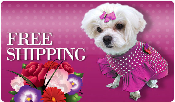 pet-apparel-free-shipping.jpeg
