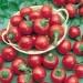 Satan's Kiss Hot Pepper Seeds