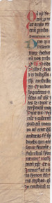 M6364 Vertical strip from edge of a liturgical leaf, Rhineland, c. 1300,  Remains of 32 lines, capitals touched in red, rubrics in red, initials in red or blue.  Readings for the Feast of St. Andrew, 330 x 75 mm.