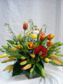 EB-3 Lilys and Tulips