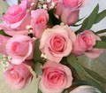 Dz. Pink Roses Arranged Vase