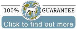 Planet Dog 100% Guarantee