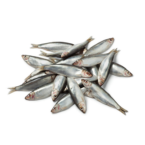 Whole Fresh Sprats from Nutriment