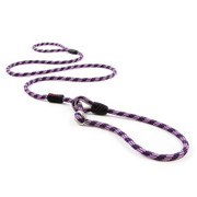 EzyDog Luca Leash in Purple. Unique all in one collar and lead combination offers great control.