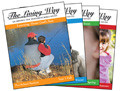 Living Way Fall Age 04 Workbook - Learning About Gods Son