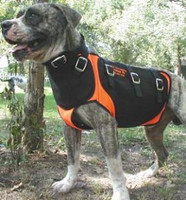 B. UGLY DOG CUT VEST