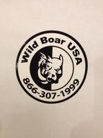 WILD BOAR USA HALF HOG/HALF DOG DECAL