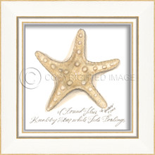 Knolby Starfish