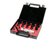 Allpax 16 Piece Standard Hollow Punch Kit AX1301 - 100K16