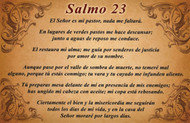 CEDULA SALMO 23