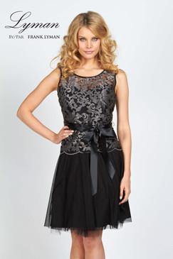 Lace & Shimmer Dress
