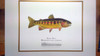 Hand-Embellished Golden Trout Limited Edition Giclee Print with a Remarque Depicting a Part of the Golden Trout Wilderness