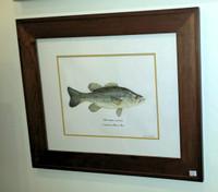 Largemouth Bass (Micropterus salmoides) Framed Original Painting