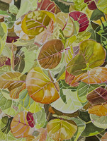 Sea Grapes (Coccoloba uvifera) Limited Edition Giclee Print-Plate 2