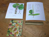 Pictured here is the sea grape fruit artist's proof along with the other two artist's proofs from the sea grape series.