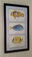 "WYSIWYG Tropical Fishes Triptych (17.75"" x 9.75"")"