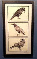 Three (American) Crow Triptych
