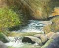 Reverse Creek