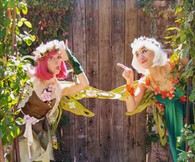 Tickets for the Saturday February 13 Virtual Fairy Show and Valentine Fairy Party - Online