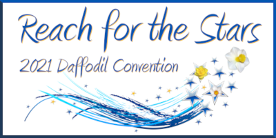 2021-ads-national-convention-reach-for-the-stars-logo-400x200.png