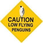 Caution_10002