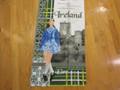 Heraldic Ireland Tea Towel , 7 x 6 left