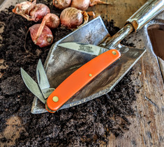 Great Eastern Cutlery  Farm and Field  Pocket Carver  - Orange Dlerin  Handles  - NEW