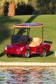 Z-Sport Custom Golf Cart by B&B