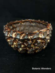 "Earth color, ""Button Style "" pot, 4"" wide ,3"" tall, Stunning color!"