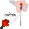 Pro Floating Rose by G&L Magic