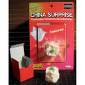 China Surprise by Tenyo Magic - Paper into Dumpling