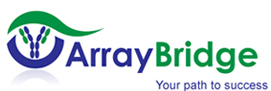 Array Bridge