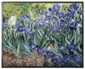 YTC8506 - Van Gogh - Irises