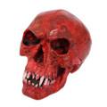 """PT11326 - 6.125"""" Red Vampire Skull"""