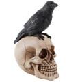 """PT11449 - 8.5"""" Raven  Skull"""