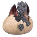 """PT11772 - 9.25"""" Garden Dragon Egg"""