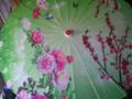Bamboo Parasol; Green Roses