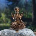 """PT13883 - 2.5"""" Lakshmi"""
